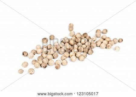 close up white pepper ower white background