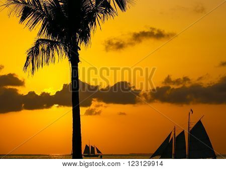 KEY WEST, USA - MAY 10, 2015: The tangerine sunset sky with some clouds above the Key West Bight with the silhouettes of sailing ships and a palm tree.