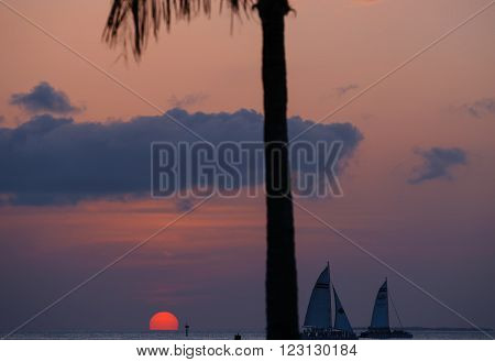 KEY WEST, USA - MAY 10, 2015: The sun glowing pink sun sinking into the sea in the Key West Bight on the already dim sky with silhouettes of sailing ships and a palm tree.
