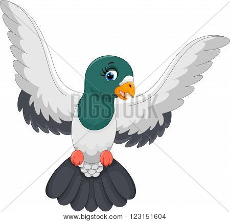 Vector illustration of pigeon landed isolated on white background