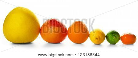 Mixed citrus fruit including a grapefruit, an orange, a lemon, a tangerine, a lime and a pomelo fruit lined and isolated on a white background, close up