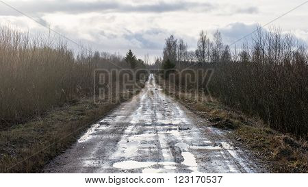 Empty Road In The Countryside In Autumn