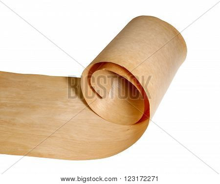 Birch wood veneer on a roll on a white background