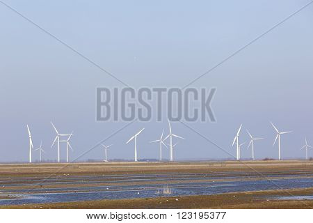 wind turbines and blue sky above eempolder in the netherlands with birds in meadow area