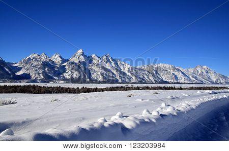 Grand Tetons Mountain Range Peaks on a gorgeous sunlit morning in Grand Teton National Park in Wyoming USA