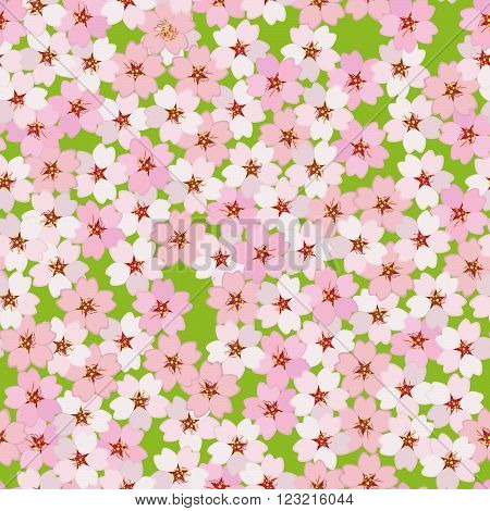 Cherry blossom. Sakura flowers. Seamless pattern. Endless floral background with copy space. Hanami. Japanese Culture. Cherry blossom viewing. Pattern fills. For decoration or printing on fabric.