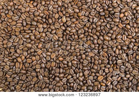 Brown Coffee Beans for Background and Copy