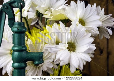green hand water pump next to bouquet of spring flowers
