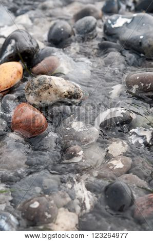 Seawater flowing in stone on the beach ** Note: Shallow depth of field