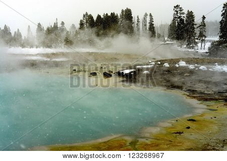 Snowing Geothermal geyser in winter Yellowstone National Park