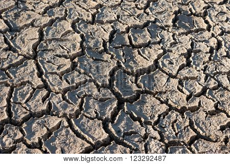Natural background: dry land surface. Altiplano, Bolivia, South America
