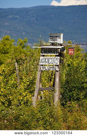 Roadside orchard and sign