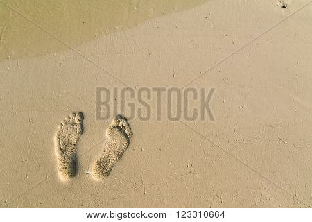 lonely footstep on the sandy coral beach