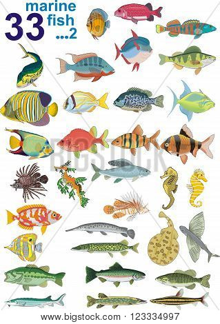 Set - Marine Fishes, Part 2 [
