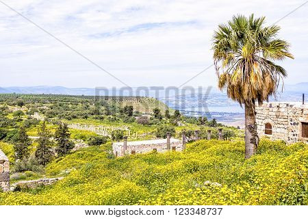 Scenic view from Gadara ruins hilltop in Jordan. The site of the Hellenistic-Roman town of Gadara overlook the Sea of Tiberias, the Golan Heights, and the Yarmouk River gorge. poster