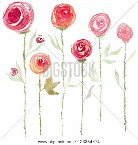 Collection of abstract watercolor rose flowers. Set of beautiful watercolor rose flowers on white background. Perfect for wedding invitations, greeting cards, quotes, blogs, posters and DIY.