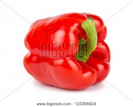 Red sweet bulgarian pepper on white background