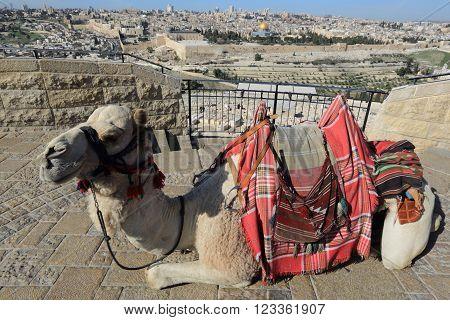 Jerusalem - Mount of Olives and old city