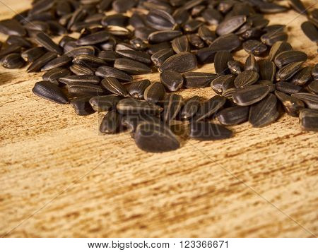 scattered wooden background sunflower seeds. selective focus