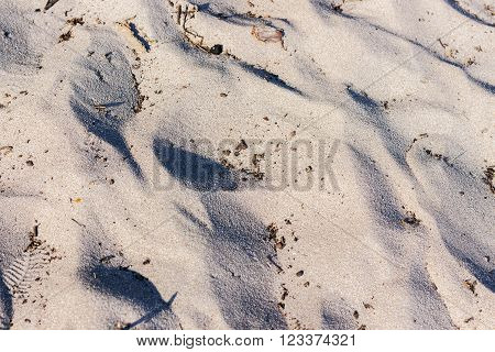 Lines in the sand of a beach in the summer