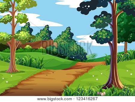 Nature scene with forest and walking trail illustration