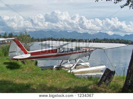 Private Airplane.