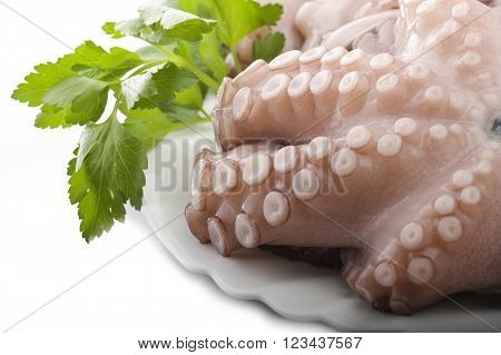 fresh octopus with potatoes and parsley on white plate