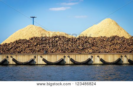 lumber logs and chips ready for shipment