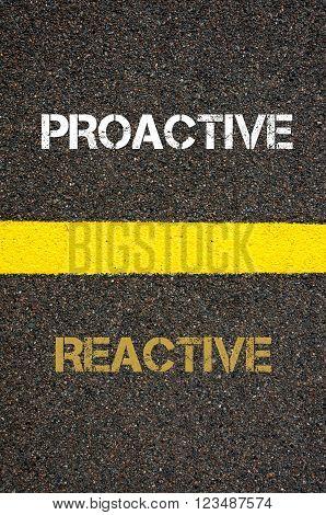 Antonym decision concept of REACTIVE versus PROACTIVE written over tarmac, road marking yellow paint separating line between words