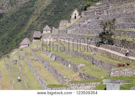 Machu Picchu, Aguas Calientes/peru - Circa June 2015: Terraces In Machu Picchu Sacred Lost City Of I