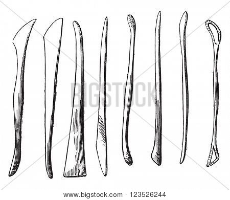 Boxwood chisels, vintage engraved illustration. Magasin Pittoresque 1873.
