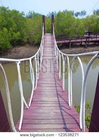 Rope bridge cross over canal in mangrove forest