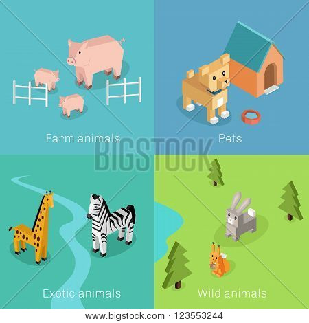 Wild exotic and farm animal set isometric. Pet dog bird, animals vector, cartoon animals, dog and zebra, horse and tropical wildlife, mammal creature illustration. Isometric animal set poster