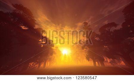 Lush Prehistoric Forest In The Sunset Sunrise Lightrays