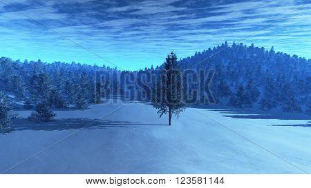 Freezing Winter Scene Pine Forest 3D Illustration