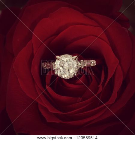 Ring in red rose with Instagram effect