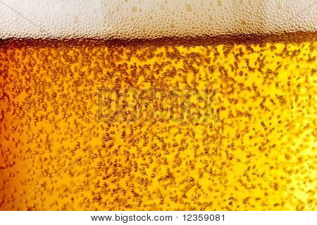 bubbles of beer