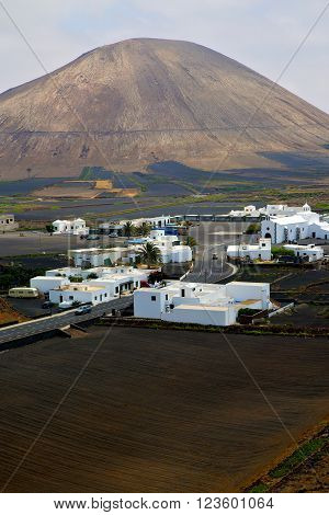 City Cultivation Home Viticulture  Winery Lanzarote