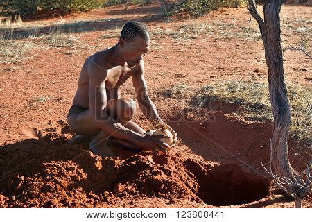 Bushmen Hunter In The Kalahari Desert, Namibia