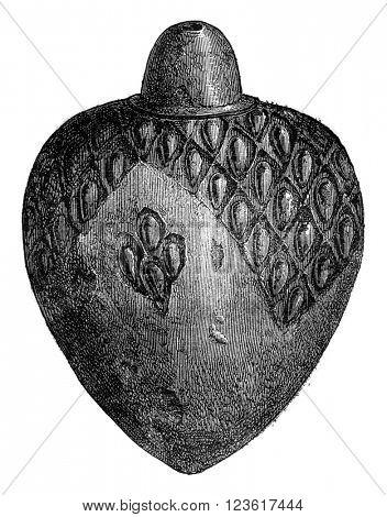 Ceramic Museum of Sevres, Greek fire grenade, black sandstone of the thirteenth century, vintage engraved illustration. Magasin Pittoresque 1876.