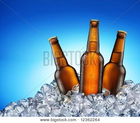 Three beer bottles getting cool in ice cubes. Isolated on a blue. File contains a path to cut