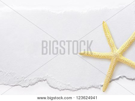 Piece Of Paper With Sea Star