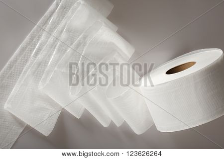 One White Toilet Paper Roll