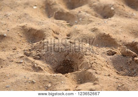 Background of friable sand in sunny day
