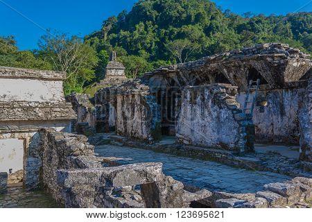 Mayan archeological ruins in Chiapas Mexico Palenque