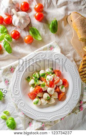 Salad with mini mozzarella tomatoes olive oil and basil pesto panini baquette