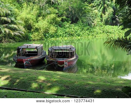 SINGAPORE ASIA - NOVEMBER 14: Wild Amazonian Calming Lake Scene at The RIVER SAFARI; a river-themed zoo and aquarium November 14, 2014 in Singapore, Asia