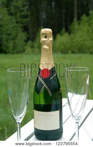 Picture of a picnic table with bottle of champagne and 2 glasses.