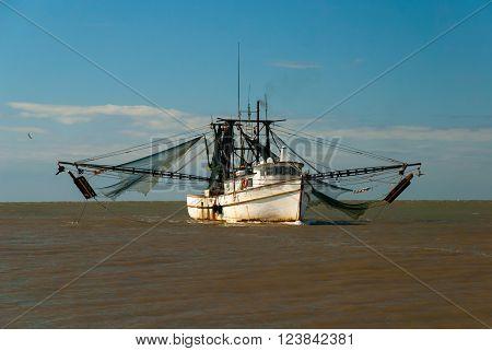 Shrimp boat returning from the sea in harbor