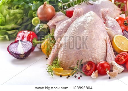 fresh chicken with vegetables and spices on a white background